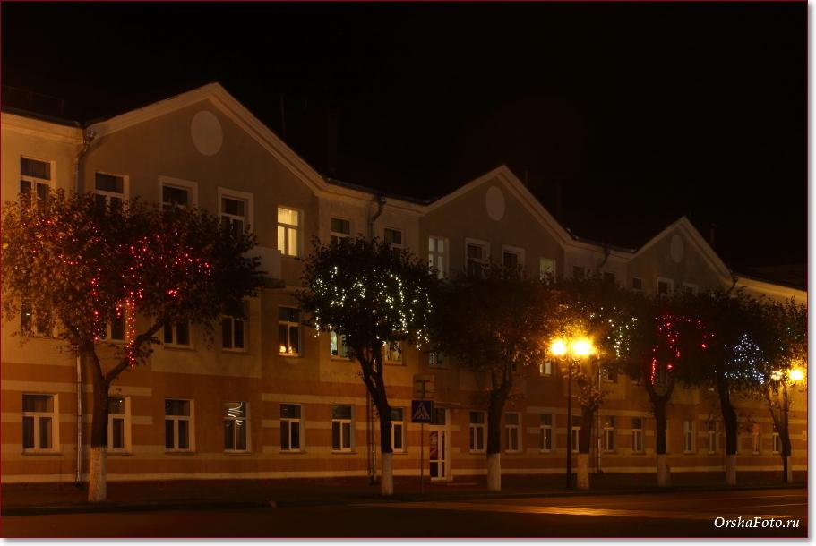 Фото Орши – деревья с подсветкой, центр