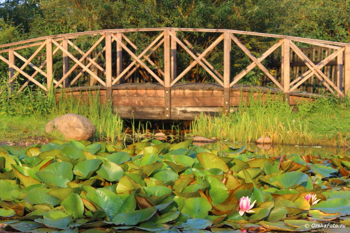Орша — мостик у Костела летним днем